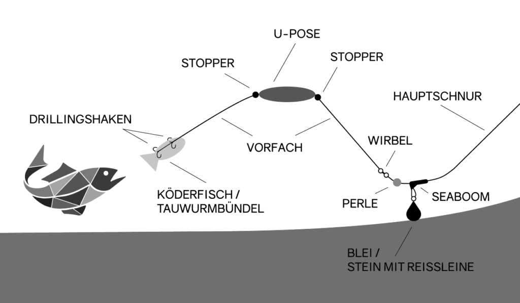 U-Posen Montage