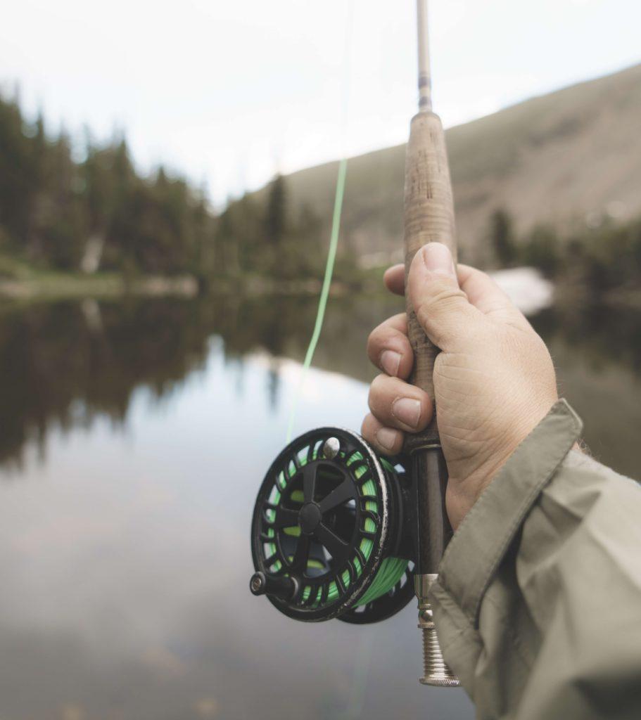 fliegenfischen rute