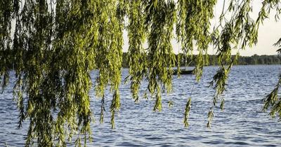 Wind auf der Wasseroberfläche