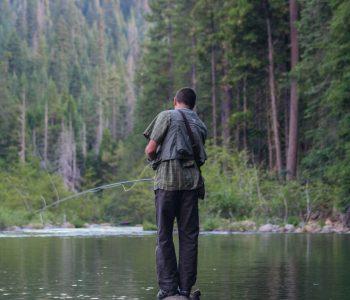 angeln ohne angelschein 4